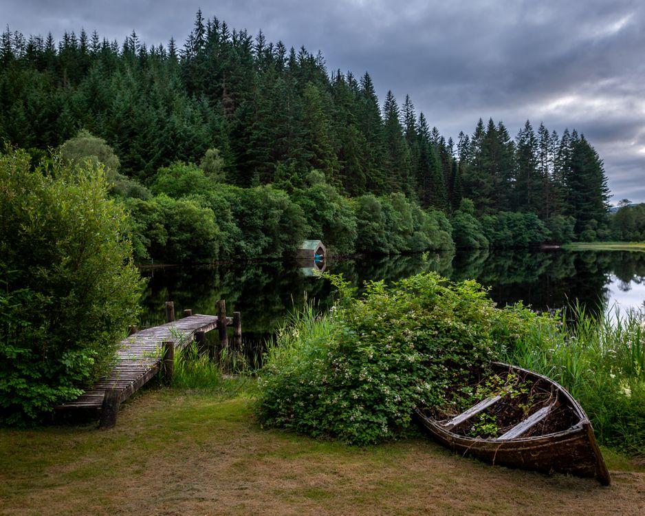 Лесной парк королевы Елизаветы рядом с А · бесплатная заставка