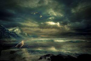 Бесплатные фото море,волны,скалы,горы,тучи,шторм,птицы