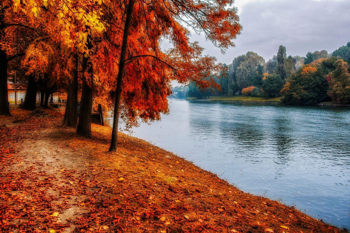 Фото бесплатно осень, парк, река, канал, деревья, осенние листья, осенние краски, пейзаж, пейзажи