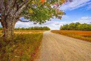 Бесплатные фото осень,дорога,поле,деревья,пейзаж