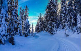 Фото бесплатно снег, дороги, сугробы