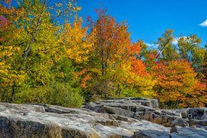 Фото бесплатно осень, деревья, скалы