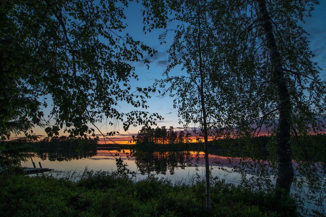 Фото бесплатно озеро закат деревья - на рабочий стол