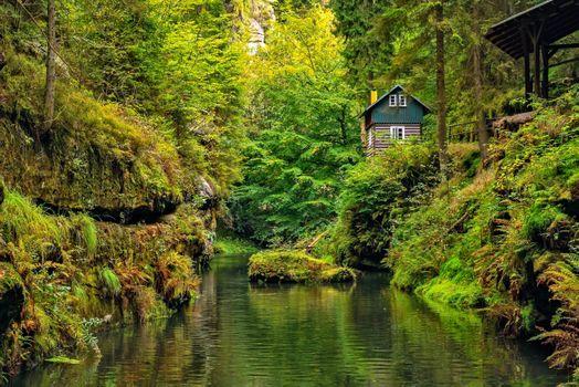 Бесплатные фото Edmunds gorge,Hrensko,German Herrnskretschen Czech Republic,лес,река,деревья,домик,скалы,зелёный,природа,пейзаж