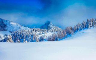Бесплатные фото Австрия,зима,горы,снег,деревья,сугробы,природа