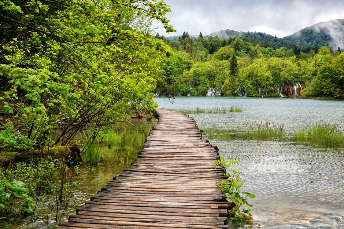 The bridge on the river in the Park Plitvice lakes · free photo