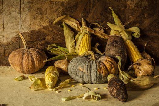 Тыквы и кукурузные початки · бесплатное фото