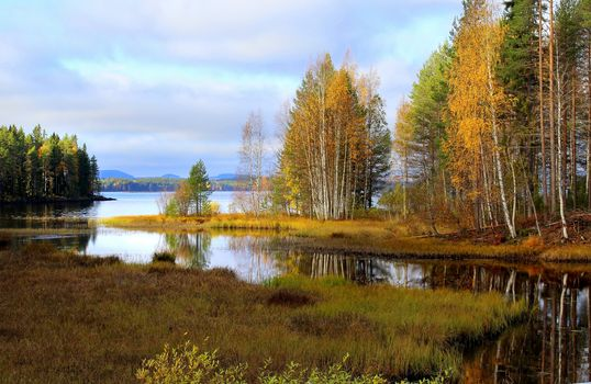 Photo free wetlands, nature, autumn colors