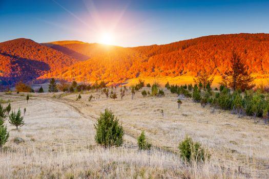 Заставки рассвет,луг,деревья,горы