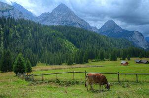 Заставки горы, природа, австрийские Альпы
