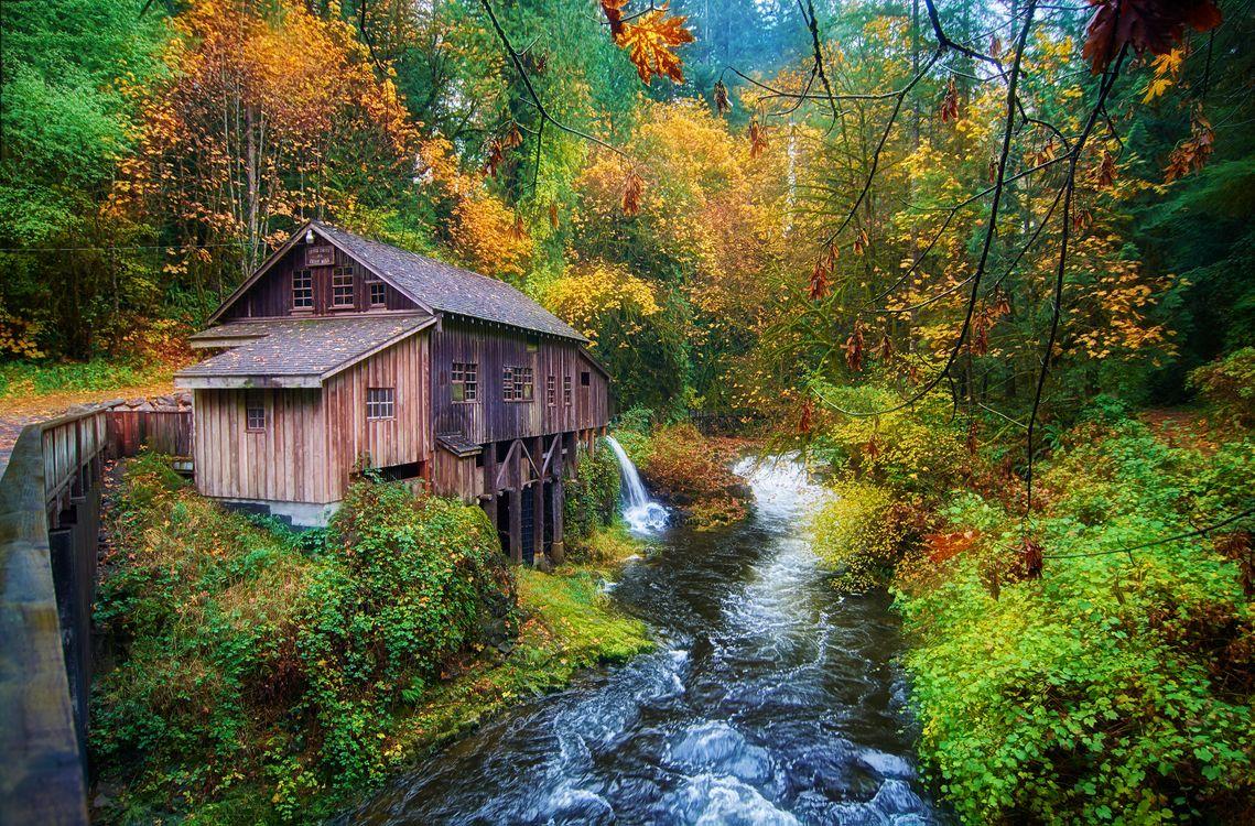 Фото бесплатно Cedar Creek Grist Mill, Вашингтон, США, водяная мельница, река, осень лес, деревья, природа, пейзаж, осенние краски, пейзажи