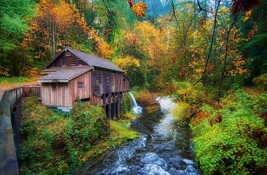 Бесплатные фото Cedar Creek Grist Mill,Вашингтон,США,водяная мельница,река,осень лес,деревья,природа,пейзаж,осенние краски