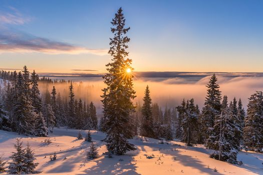 Photo free the sun, the snow, Norway