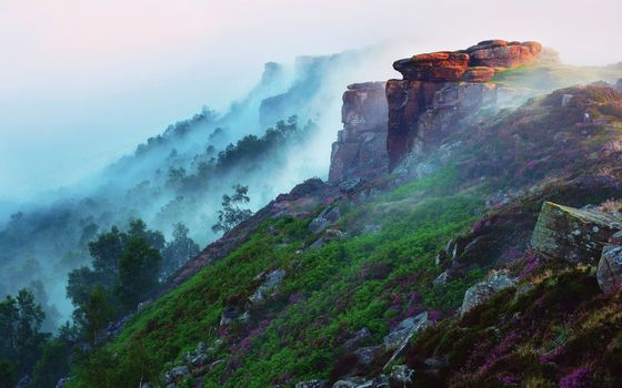 Фото бесплатно туман, лес, пейзажи