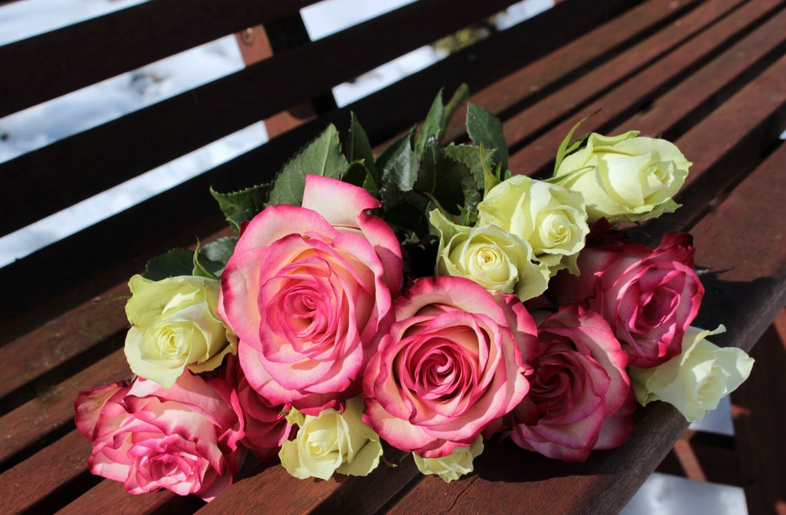Обои Красивый букет, букет, цветочная композиция картинки на телефон