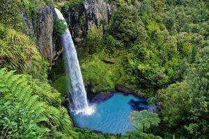 Бесплатные фото новая зеландия,водопад,водоём,падение воды,природа,северный остров,зеленый