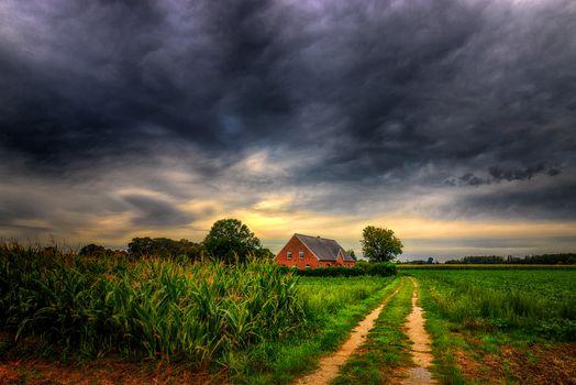Photo free house, corn, road