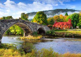 Фото бесплатно Сноудония, деревья, Северный Уэльс