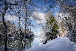 Бесплатные фото зима,скамья в сугробах,дорога,река,лес,деревья,природа