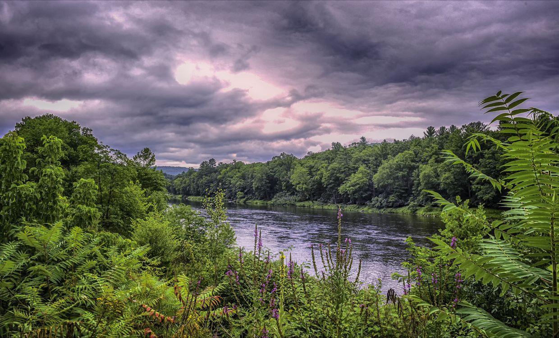 Фото бесплатно Delaware River, United States, река, закат, лес, деревья, природа, пейзаж, пейзажи