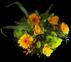 Фото бесплатно цветок, оригинал, красивый букет