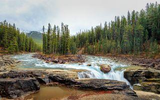 Бесплатные фото Sunwapta Falls,Jasper National Park,река,водопад,деревья,пейзаж