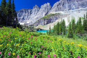 Фото бесплатно Lake Trail, Glacier County, United States