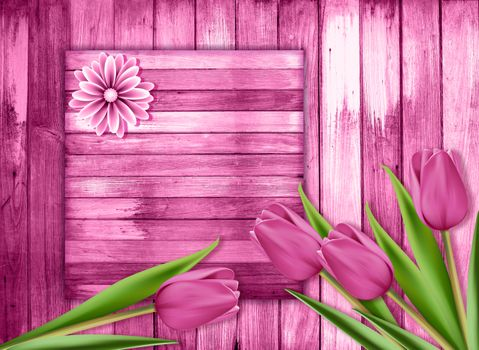 Заставки цветы, тюльпаны, икебана