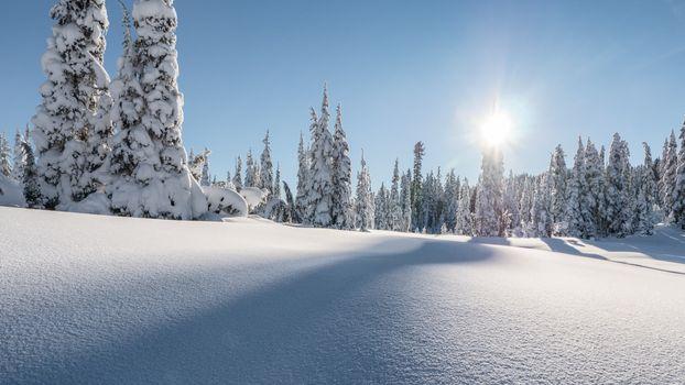 Photo free Strathcona Park, British Columbia, Canada