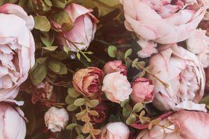 Фото бесплатно цветы, букет, розовые
