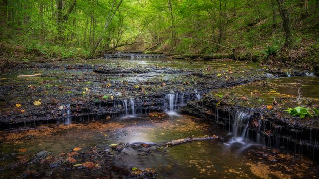 Заставки Stillhouse Hollow Falls, штат Теннесси, лес