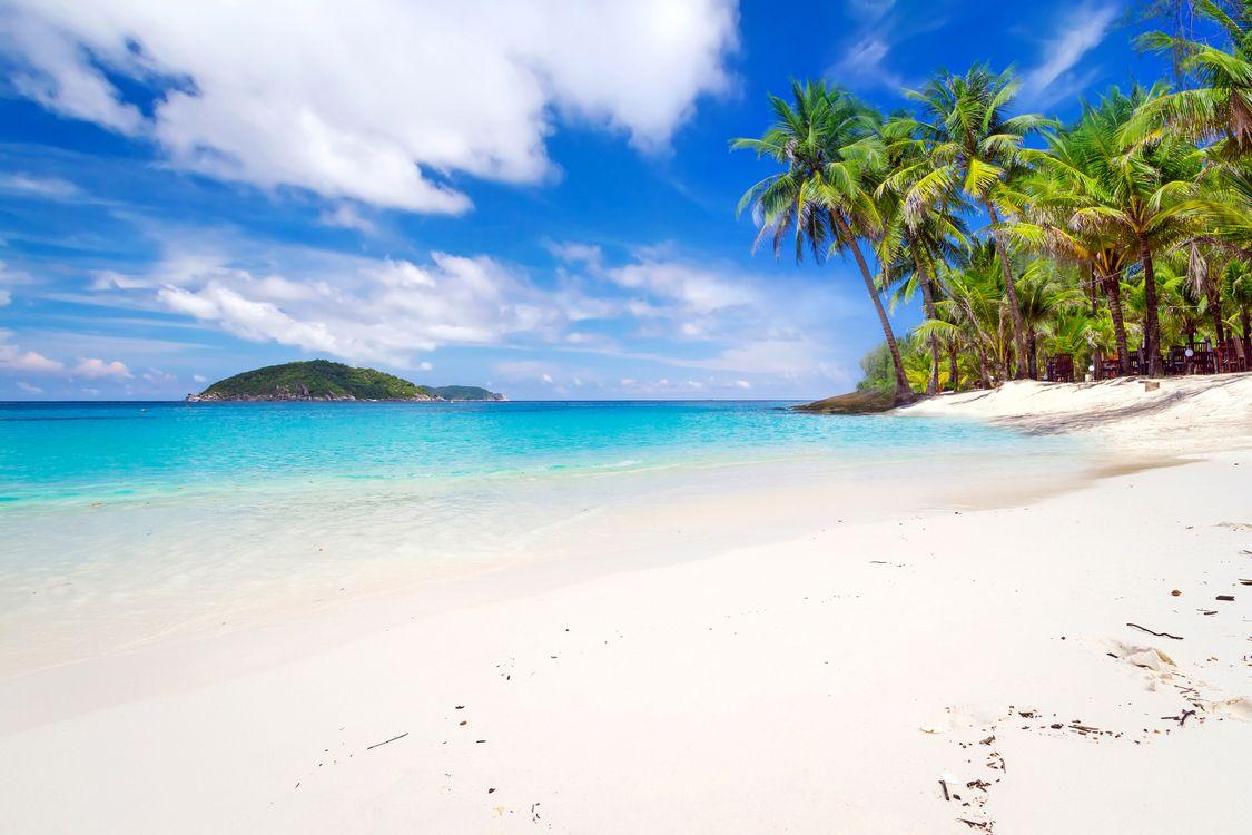 Обои пейзаж, тропические, пляж картинки на телефон