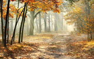 Заставки осень, красивый, пейзаж