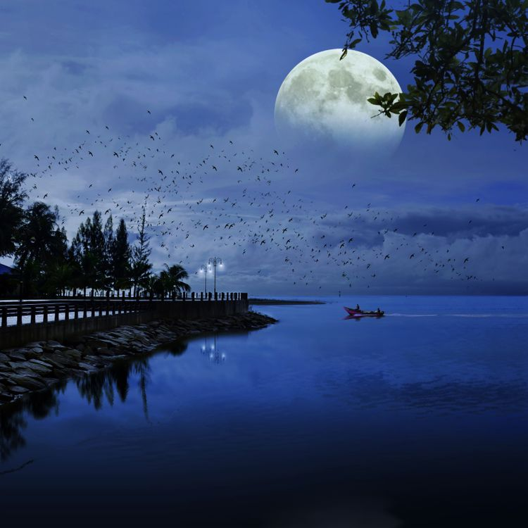Фото бесплатно луна, море, синий - на рабочий стол