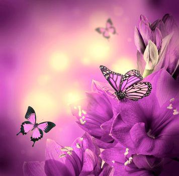 Бесплатные фото бабочки,цветы,лилии,флора,art