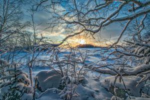 Фото бесплатно Сугробы, ветви деревьев, снег