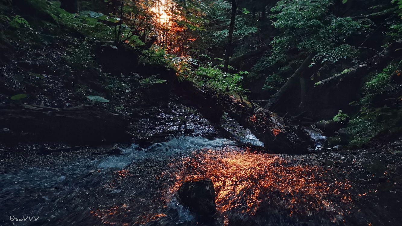 Фото горная река природа воды - бесплатные картинки на Fonwall