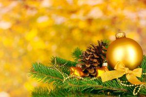 Фото бесплатно шар, ветка, шишка, ель, украшения, сосны
