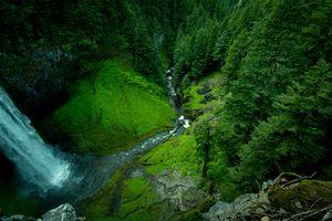 Фото бесплатно ручей, пейзаж, мох