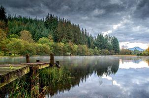 Бесплатные фото Лох-Ард,Шотландия,осень,утро,туман,лес,деревья