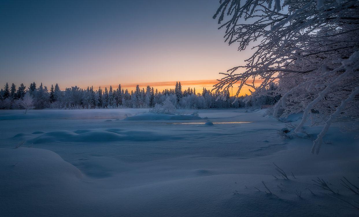 Фото бесплатно Финляндия, зима, снег, лес, деревья, сугробы, закат, пейзаж, пейзажи