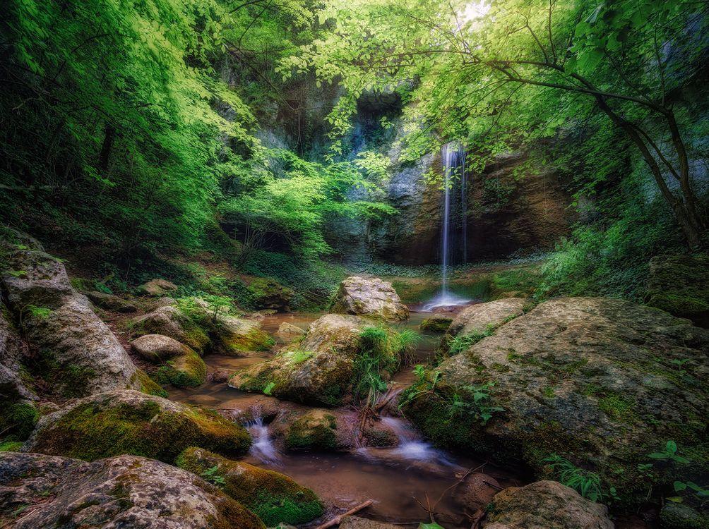 Заставка речка, лес на монитор