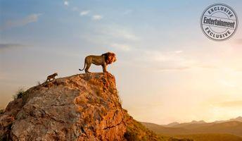 Заставки маленький Симба, Муфаса, скала, персонажи, главные герои, Король лев