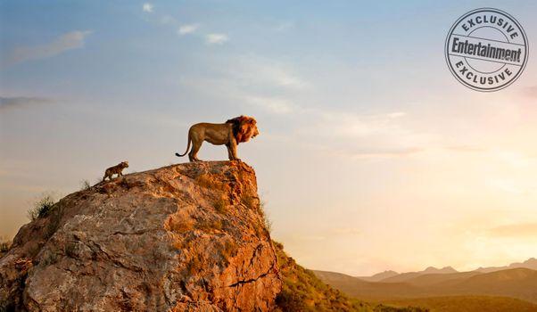 Заставки маленький Симба,Муфаса,скала,персонажи,главные герои,Король лев