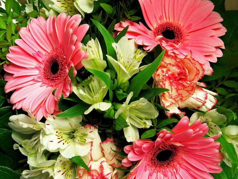 Фото бесплатно цветочный, праздничный букет, оригинал - на рабочий стол