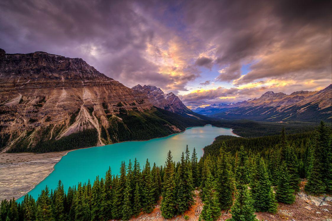 Фото бесплатно Peyto Lake, Banff National Park, Alberta, Canada, озеро, горы, скалы, лес, деревья, пейзаж, Озеро Пейто, Национальный Парк Банф, Альберта, Канада, закат, пейзажи