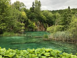 Бесплатные фото Плитвицкие озера,Хорватия,водопад,деревья,пейзаж,Национальный парк Плитвицкие озера