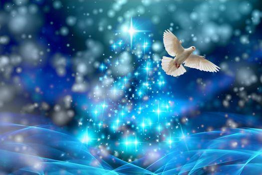 Фото бесплатно рождество, голубь, огни