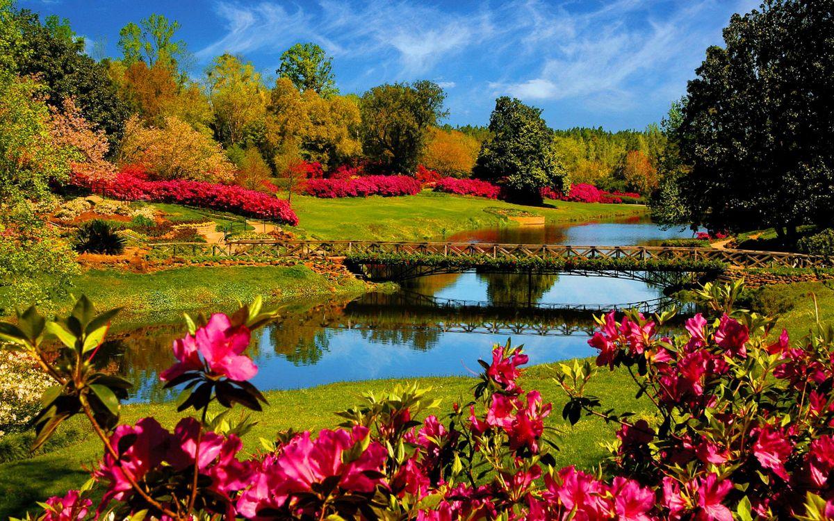Фото бесплатно парк, ручей, мосты - на рабочий стол