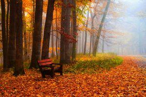 Заставки осень,парк,лес,деревья,туман,лавочка,осенние краски